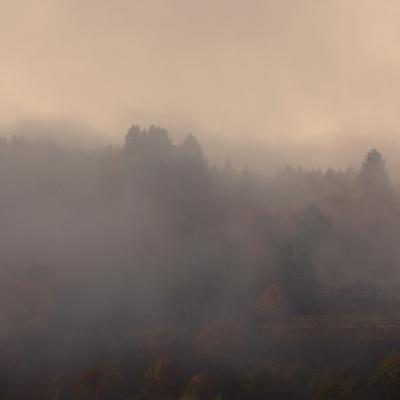 Dans la brume de l'aube