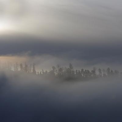 Echarpe de brume
