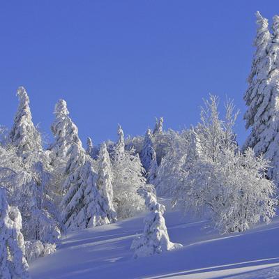 Col du  Haag en hiver.