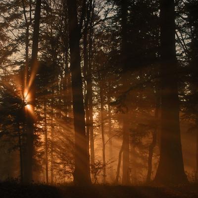 Couchers et lever de soleil
